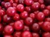 Mận cherry Mỹ